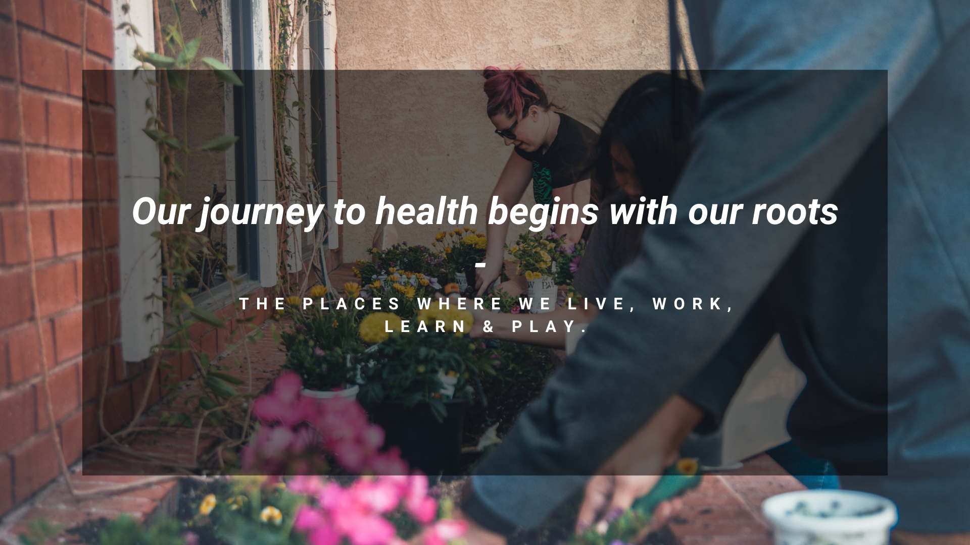 Our journey with health begins with our roots - the places where with live, work, learn and play.