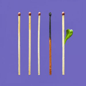 Trailhead Institute Burnout Prevention Resources Blog Page